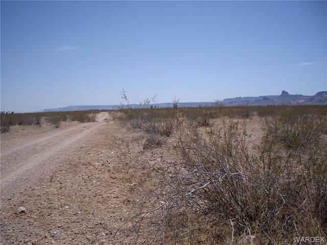 4820 S Epidote Road, Golden Valley, AZ 86413 (MLS #981881) :: The Lander Team