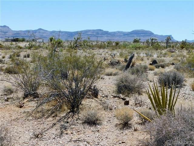 28370 N Mullane Drive, Meadview, AZ 86444 (MLS #981901) :: The Lander Team
