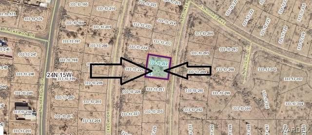 10047 N Pioneer Drive, Kingman, AZ 86401 (MLS #982159) :: AZ Properties Team | RE/MAX Preferred Professionals