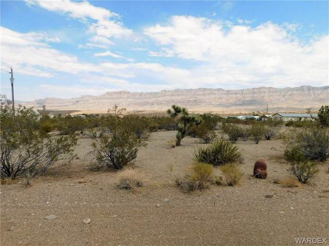 415 E Sumner Drive, Meadview, AZ 86444 (MLS #983307) :: The Lander Team