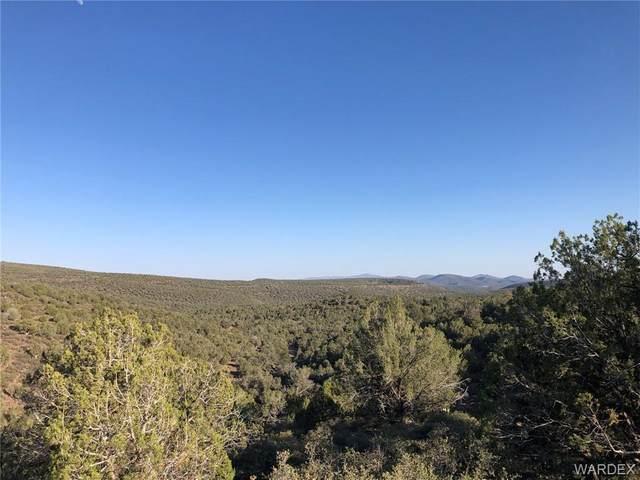 5508 N Kit Fox Trail, Kingman, AZ 86401 (MLS #983363) :: The Lander Team