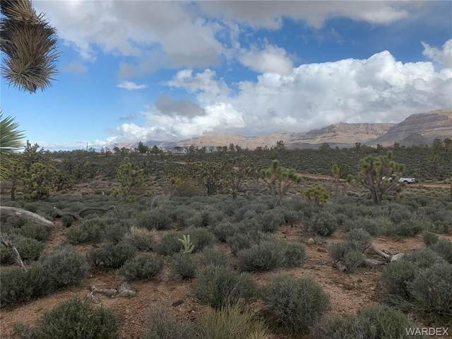 26681 N Yucca Road, Meadview, AZ 86444 (MLS #983390) :: The Lander Team