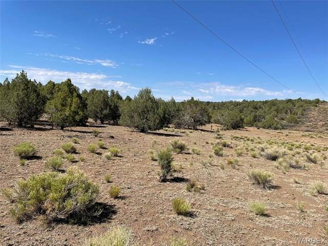 160 Acres Cross Mountain Rd, Seligman, AZ 86337 (MLS #983708) :: AZ Properties Team   RE/MAX Preferred Professionals