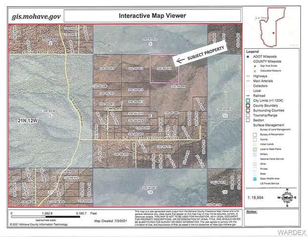 - Stagecoach Well, Kingman, AZ 86401 (MLS #983728) :: AZ Properties Team | RE/MAX Preferred Professionals