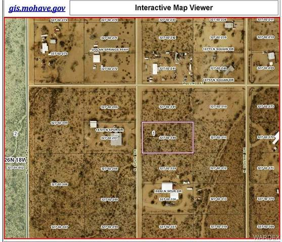 LMRO #13A SEC-1 LOT  Spur Drive, Dolan Springs, AZ 86441 (MLS #983781) :: The Lander Team