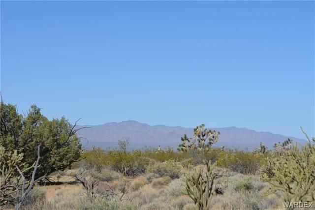 Lot 195 Diamondback Road, Yucca, AZ 86438 (MLS #983816) :: The Lander Team