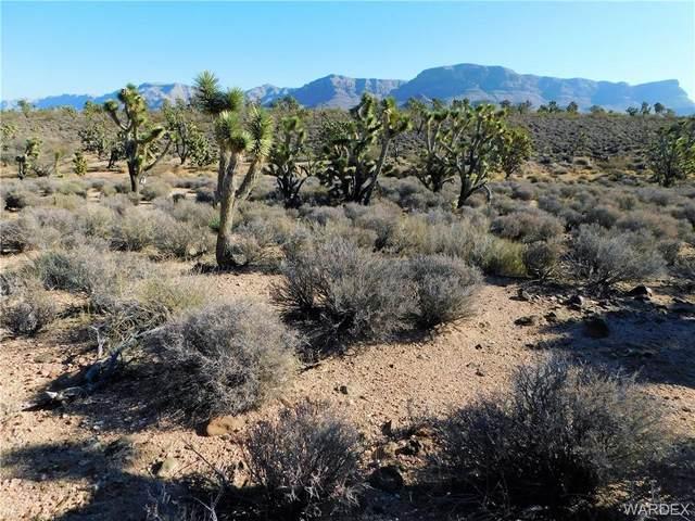 26586 N Yucca Road, Meadview, AZ 86444 (MLS #983856) :: The Lander Team