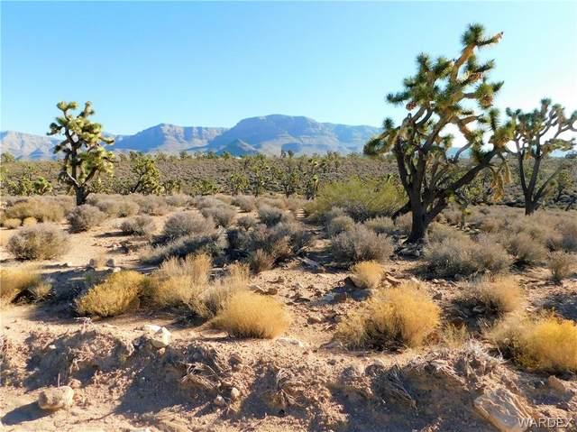26602 N Yucca Road, Meadview, AZ 86444 (MLS #983858) :: The Lander Team