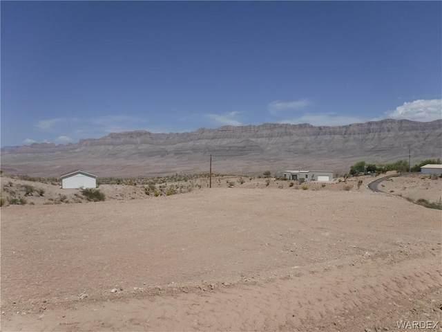 30180 N Basin Drive, Meadview, AZ 86444 (MLS #984007) :: AZ Properties Team | RE/MAX Preferred Professionals