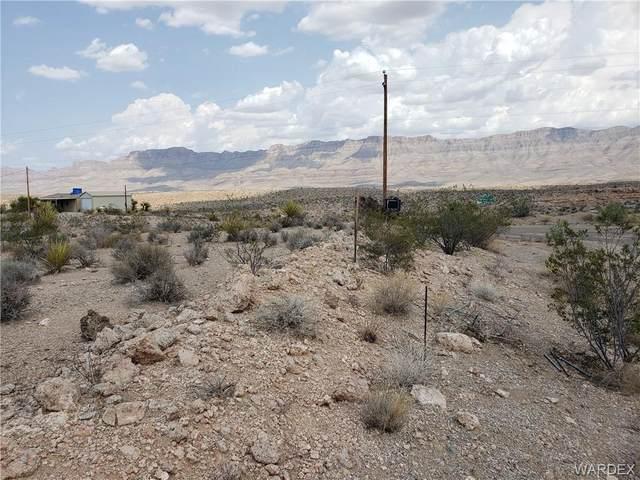 1335 E Hance Drive, Meadview, AZ 86444 (MLS #984060) :: AZ Properties Team | RE/MAX Preferred Professionals