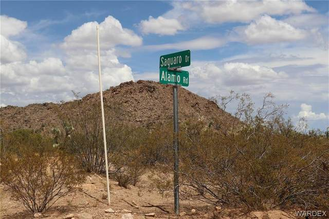 8027 E Saguaro Drive, Yucca, AZ 86438 (MLS #984149) :: The Lander Team