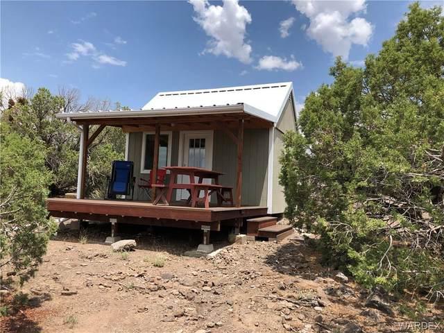 Parcel 13 E Buck Trail, Kingman, AZ 86401 (MLS #984166) :: The Lander Team