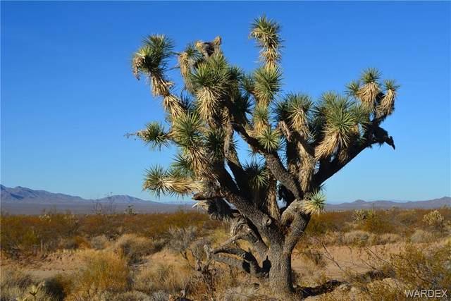 408B Wyatt Earp Road, Yucca, AZ 86438 (MLS #984237) :: The Lander Team