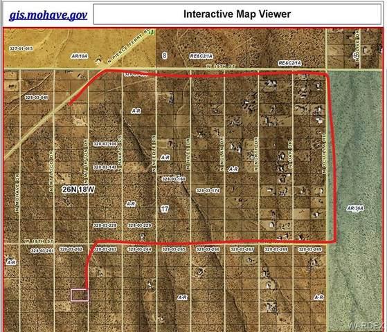 LMRO #9 S-17 LOT 366 Mt Tipton, Dolan Springs, AZ 86441 (MLS #984281) :: The Lander Team