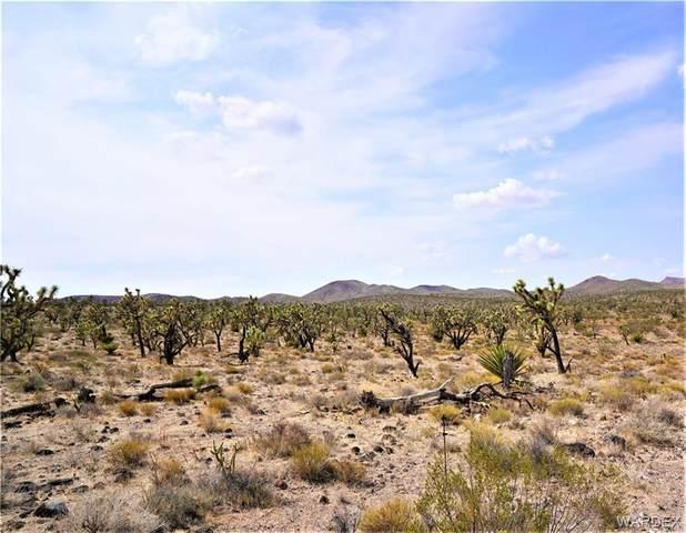 LOT 12 N Kenmore Drive, Dolan Springs, AZ 86441 (MLS #984354) :: The Lander Team
