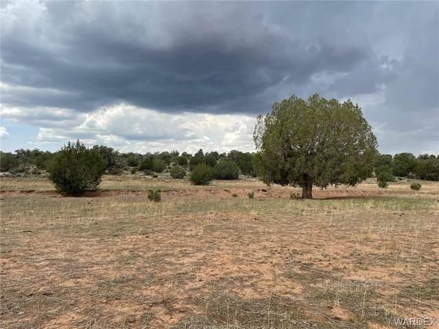 40 Acres Denny 5 Road, Seligman, AZ 86337 (MLS #984370) :: AZ Properties Team   RE/MAX Preferred Professionals