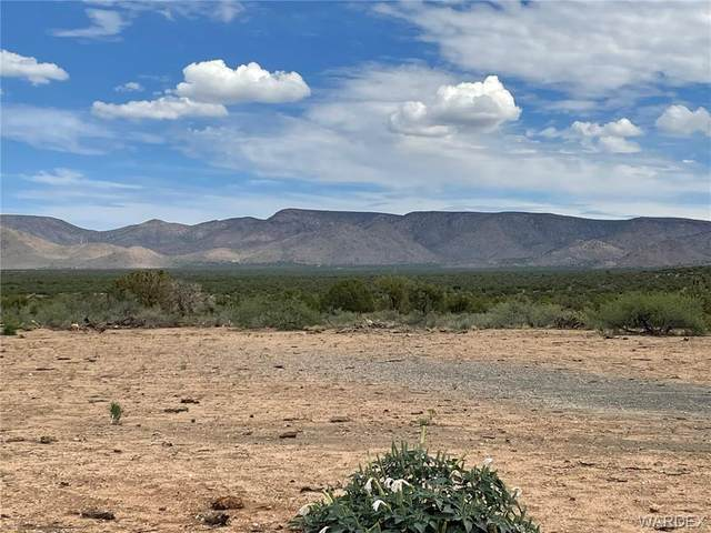 177 Acres Silver Springs Road, Kingman, AZ 86401 (MLS #984442) :: AZ Properties Team   RE/MAX Preferred Professionals