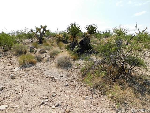 1210 W Grand Wash Drive, Meadview, AZ 86444 (MLS #984578) :: The Lander Team