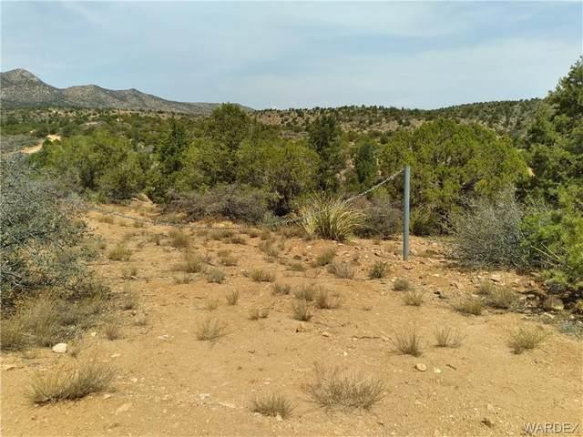Tba Mountain Spring Ln., Hackberry, AZ 86411 (MLS #985532) :: The Lander Team
