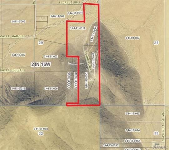 89 Acres E Calle Bill, Kingman, AZ 86409 (MLS #985680) :: The Lander Team