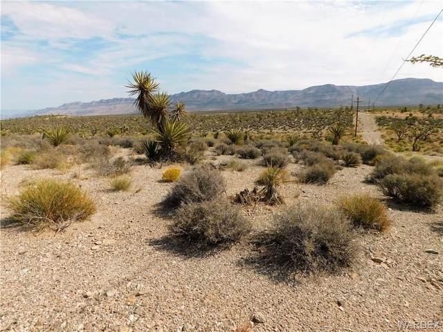 27385 N Tamarisk Street, Meadview, AZ 86444 (MLS #986184) :: The Lander Team