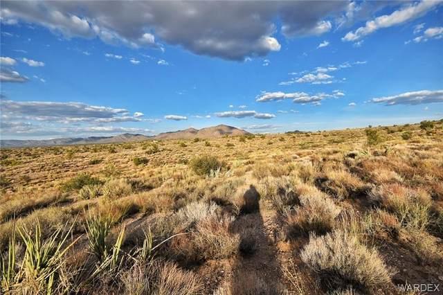 000 Dry Creek Trail, Kingman, AZ 86401 (MLS #986408) :: The Lander Team