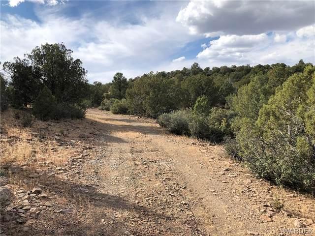 210 N Willows Ranch Road, Kingman, AZ 86401 (MLS #986419) :: The Lander Team