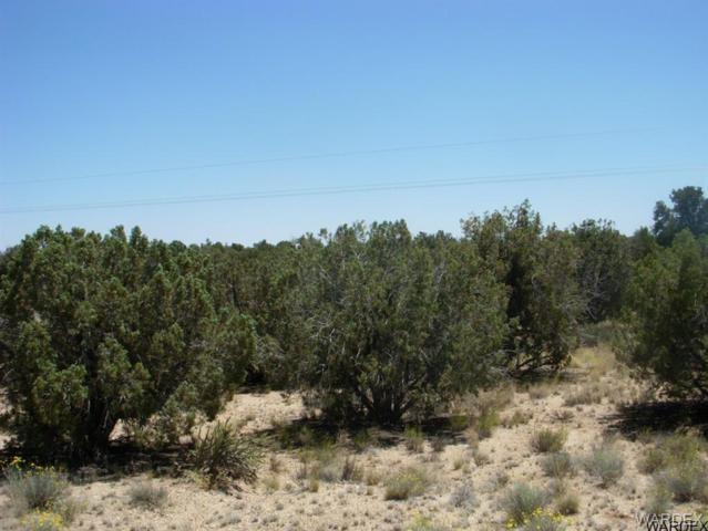 0000 Dubois Road, Kingman, AZ 86401 (MLS #903370) :: The Lander Team