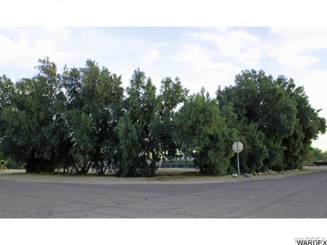 1619 E Luna Media, Fort Mohave, AZ 86426 (MLS #920746) :: The Lander Team