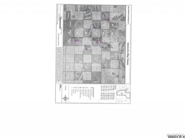 0 N Paradise Point Lane, Hackberry, AZ 86411 (MLS #922366) :: The Lander Team