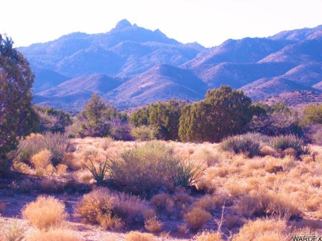 0000 Mountain Shadow Road, Kingman, AZ 86401 (MLS #927079) :: The Lander Team