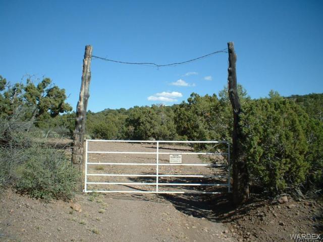 UNK Knight Creek Road, Kingman, AZ 86401 (MLS #928534) :: The Lander Team
