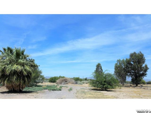 10182 S St George Road, Mohave Valley, AZ 86440 (MLS #929223) :: The Lander Team