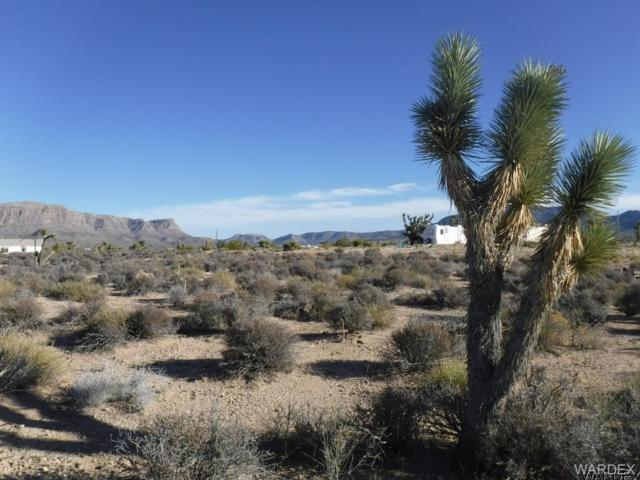 27056 N Driftwood Drive, Meadview, AZ 86444 (MLS #934390) :: The Lander Team