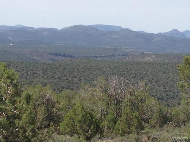Lot 119 N Bob White, Kingman, AZ 86401 (MLS #939109) :: The Lander Team