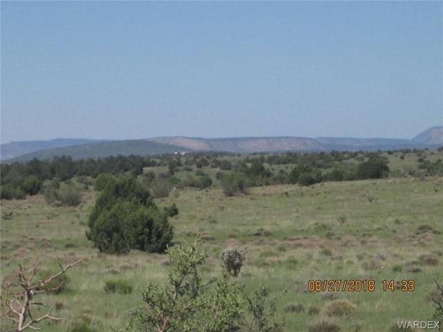 Lot 311 Hyde Park Road, Seligman, AZ 86337 (MLS #950484) :: The Lander Team