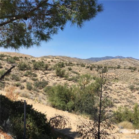 11802 E Moss Wash Road E, Kingman, AZ 86401 (MLS #952047) :: The Lander Team