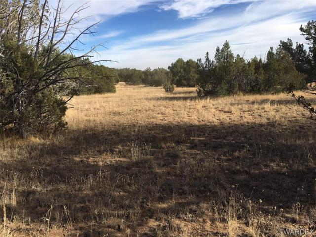 42883 N Walk About Trail, Seligman, AZ 86337 (MLS #953201) :: The Lander Team