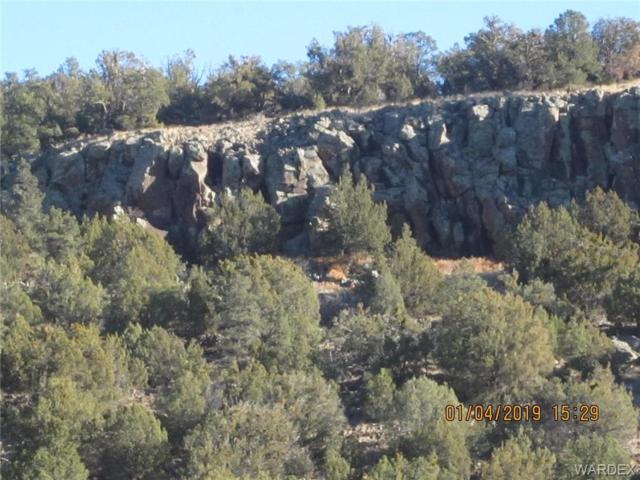 Parcel 17 Our Street, Seligman, AZ 86337 (MLS #954144) :: The Lander Team