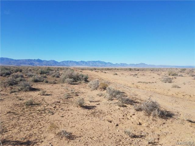 Lot 19 Sharon Road, Kingman, AZ 86409 (MLS #954851) :: The Lander Team