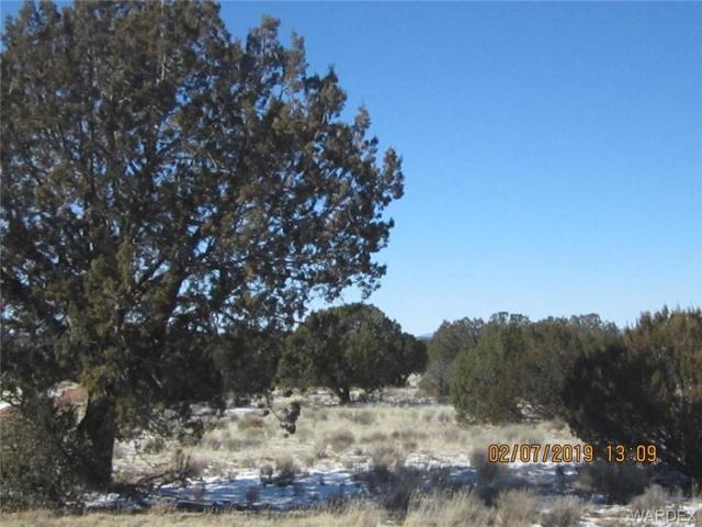 120 Acres Hyde Park Road, Seligman, AZ 86337 (MLS #955557) :: The Lander Team