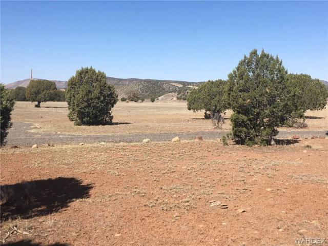 18750 E Bobcat Trail, Kingman, AZ 86401 (MLS #955979) :: The Lander Team