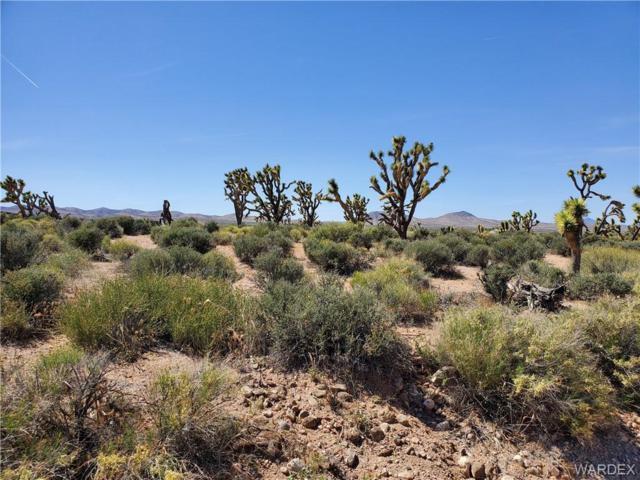 27212 N Driftwood/ Septic in, Meadview, AZ 86444 (MLS #957728) :: The Lander Team