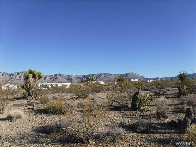 Lot 1344 W Cathedral Drive, Meadview, AZ 86444 (MLS #964347) :: The Lander Team