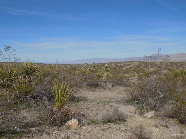 1570 W La Jolla Circle, Meadview, AZ 86444 (MLS #965310) :: The Lander Team