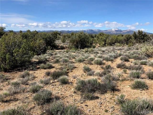 Lots 12 F&H Crazy Horse Road, Kingman, AZ 86401 (MLS #965934) :: The Lander Team