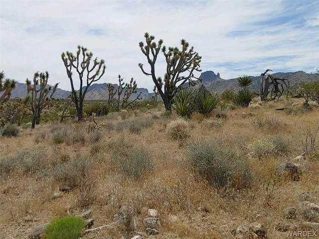 Lot 394 N Lost Mine Dr, Dolan Springs, AZ 86441 (MLS #968767) :: The Lander Team