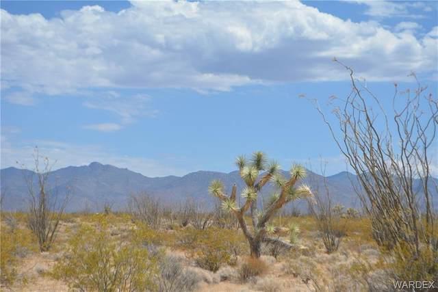 South 1/2 Lot C7 Ruby Road, Yucca, AZ 86438 (MLS #970377) :: The Lander Team