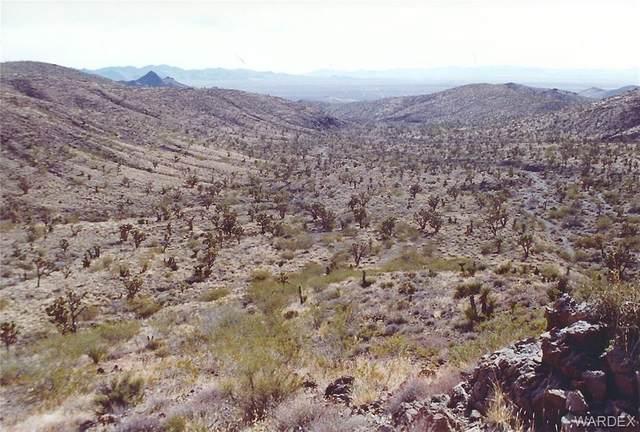 20 acres N Edgemont Road, Dolan Springs, AZ 86441 (MLS #970684) :: The Lander Team