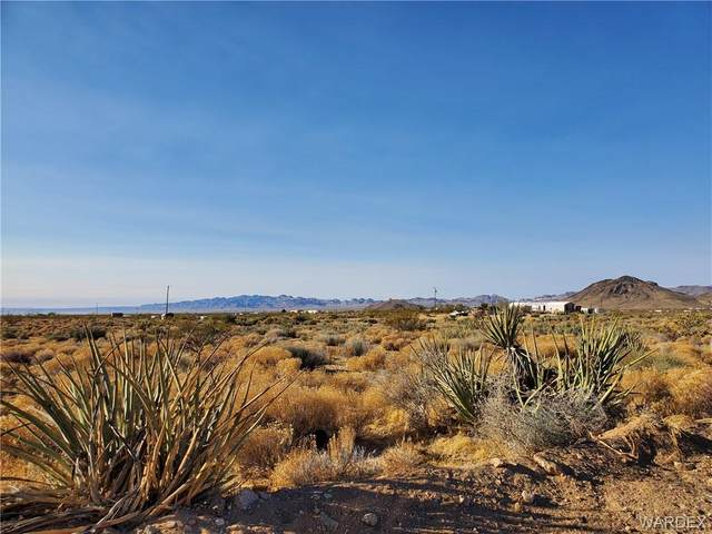 Lot 6 Herbert Drive, Golden Valley, AZ 86413 (MLS #973234) :: The Lander Team